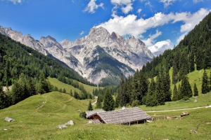 Berchtesgaden_alpine_pasture_Muehlsturzhoerner